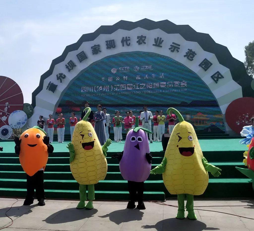 泸州江之阳蔬菜品赏会今日开幕,五一去哪里?赶快来伞里!