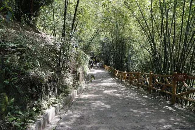 宜宾也有玻璃栈道了,阳光、瀑布、河流、吊桥简直不要太刺激!
