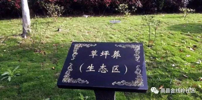 重磅!宜宾将免费提供生态葬墓穴,并为逝者家庭补助1000元!