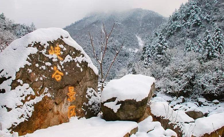 天堂寨的雪!让人的心灵在尘俗中慢慢地净化...