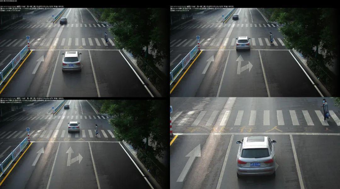 【交通违法】违停,未礼让行人!邹平这些车主被曝光!