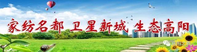 高阳新闻2019年10月18日