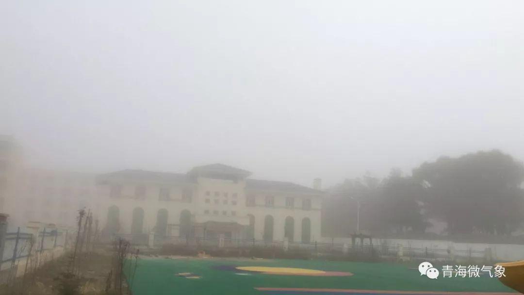 雨雪纷飞!今天青海各地最全雪景图!