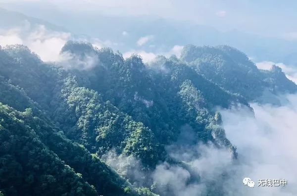 云雾缭绕!25秒带你看完南江光雾山
