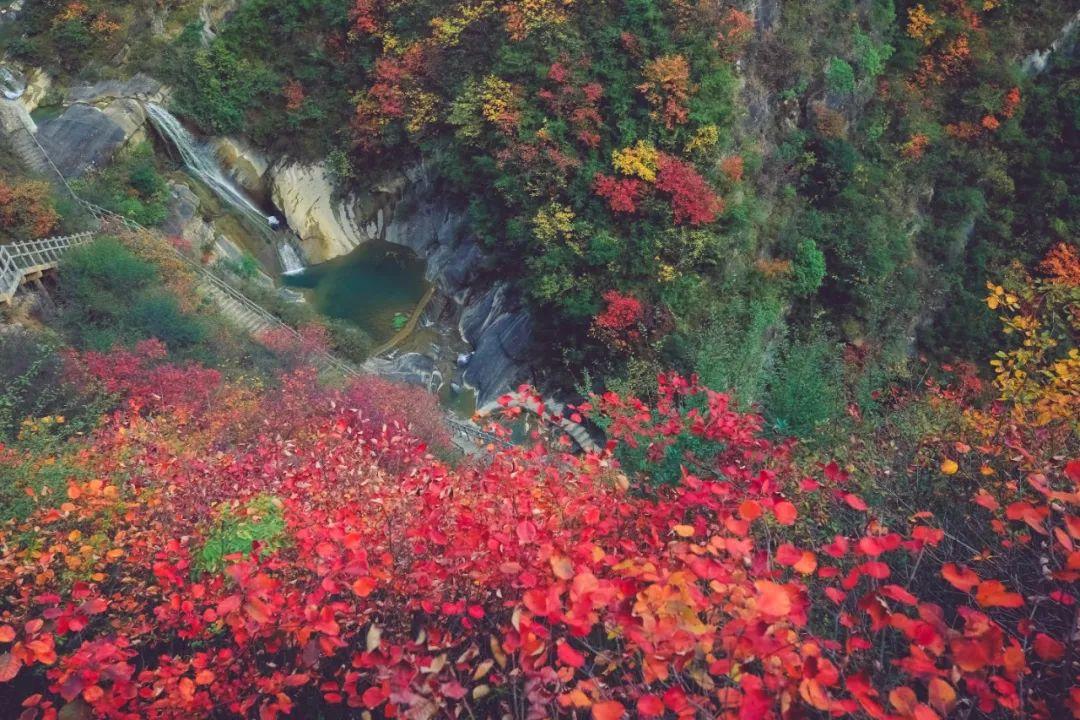 【��l】秦�X�t�~看山�ll山��t�~浪漫了你一季的秋天~