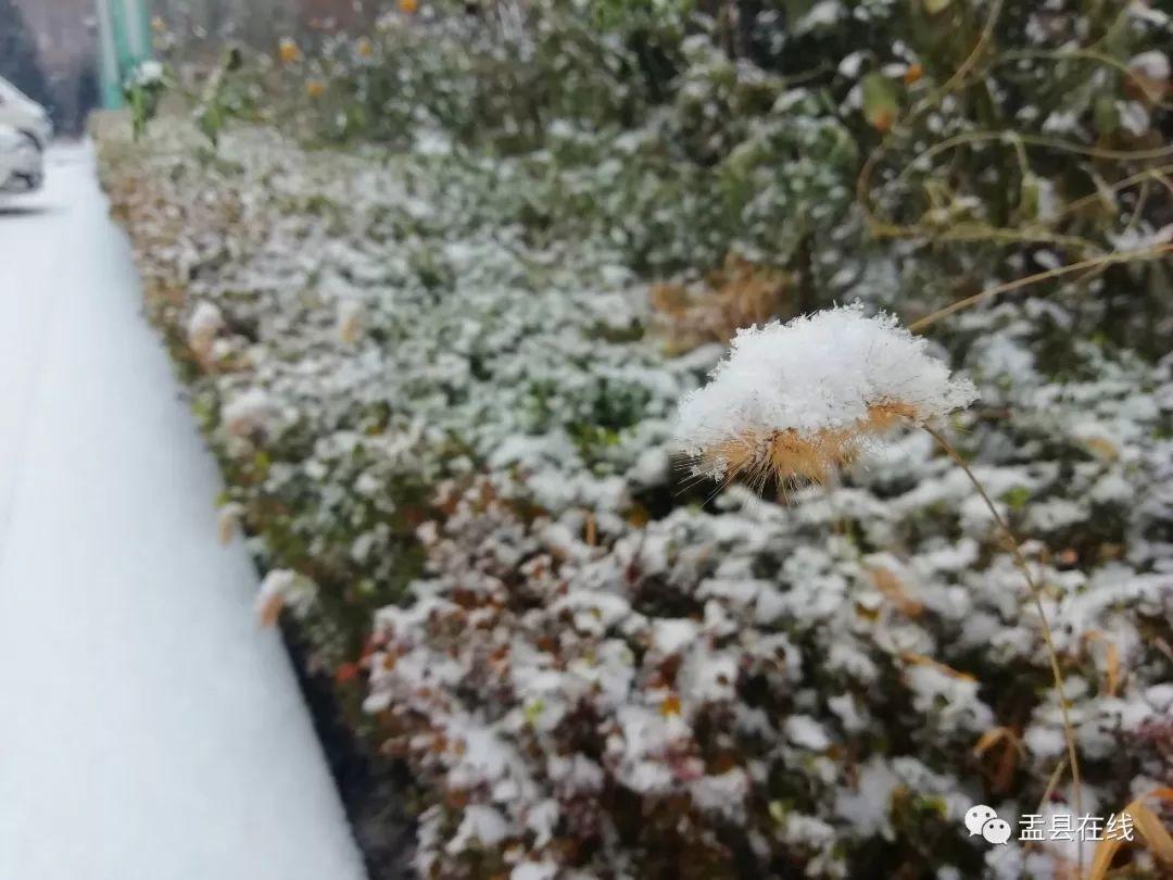 今日冬至,最冷的日子要�砹�!