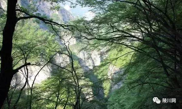 陵川有��神秘之地,抬�^��家界低�^九寨�希�