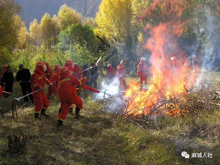 【人社关怀】@麻城人,这里有一封森林防火急件!请注意查收