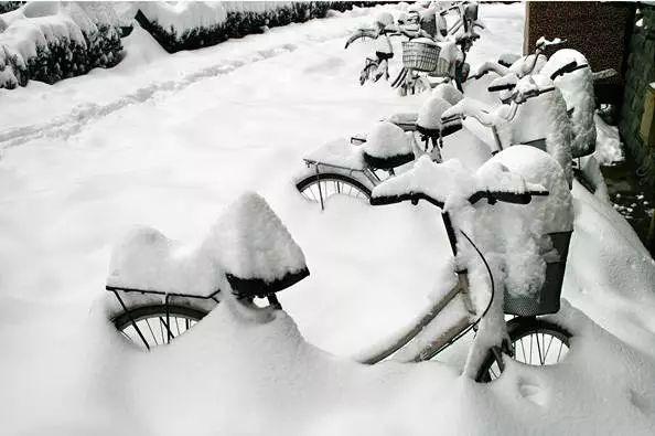 11年前的那场大雪纷飞!照片重现当年故事,满满都是回忆