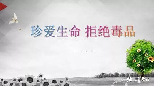 """���H禁毒日!一起揭�_毒品""""面�"""""""