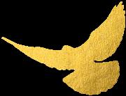 """喜报!金寨县检察院荣获第七届""""全国先进基层检察院""""荣誉称号!"""