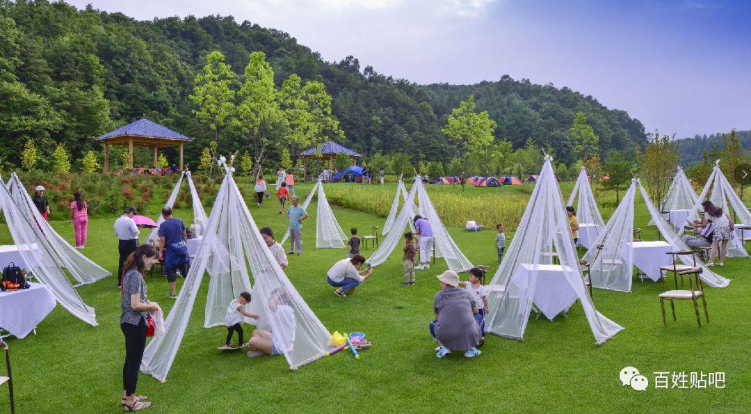 在草原上唱歌、跳舞、打水仗、篝火晚会,这个夏天我们栾川这样过!