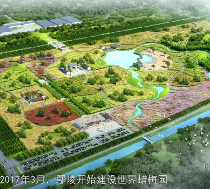 鄢陵世界蜡梅园宣传片