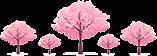 藏不住了,抱儿山的樱花,美出圈了!