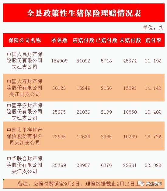 【9月13日】夹江生猪保险理赔进度来啦