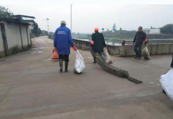 金牛河生�B保�o在行�樱�志愿者自�l地清理白色垃圾和污染物
