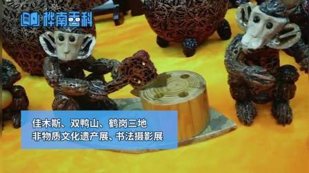 【视频】桦南大剧院举办非物质文化遗产展书画摄影展