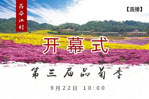 【開園直播】2018 中國?麻江第三屆藥谷江村品菊季開園