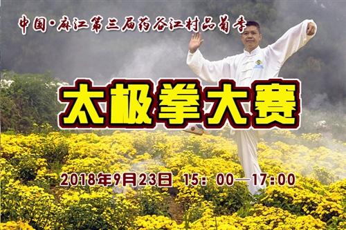 [直播]中國?麻江第三屆藥谷江村品菊季太極拳大賽