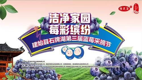 潔凈家園 莓彩繽紛 建始縣石牌湖第三屆藍莓采摘節