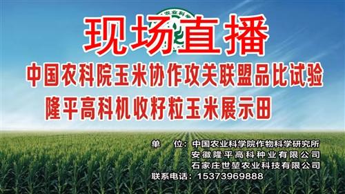 现场直播中国科学院生态循环农业示范基地