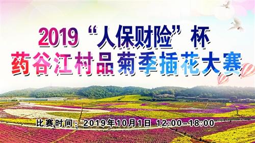 """【直播】2019""""人保財險""""杯藥谷江村?品菊季插花大賽"""