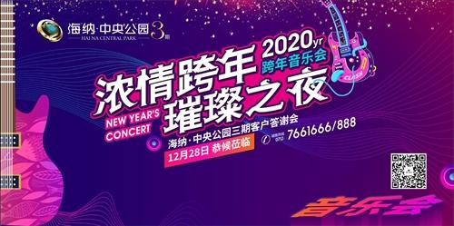 直播 大悟海納中央公園3期2019年客戶答謝會暨2020年跨年音樂會