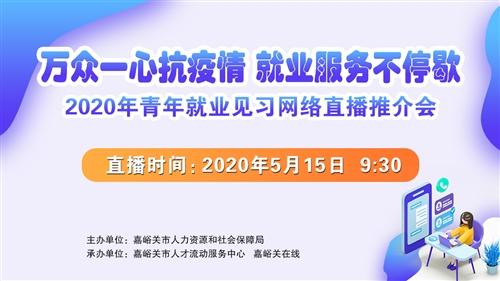 2020年青年就业见习网络直播推介会