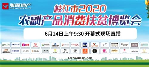 【现场直播】枝江市2020农副产品博览会开幕式