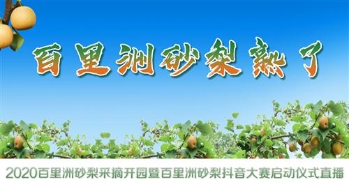 【直播】2020百里洲砂梨采摘开园暨百里洲砂梨抖音大赛启动仪式