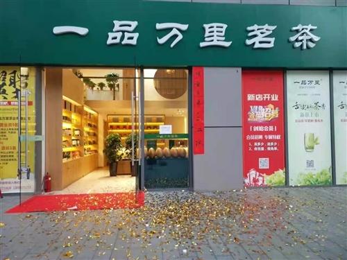 【直播回放】《一品万里茗茶东岭店》一周年店庆大型纳凉晚会