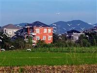 农村生活的9大好处,南溪人你想要的生活都在这里,住在城里的你羡慕不?
