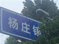 美丽乡村行|走进杨庄镇,这个村庄外国人都被吸引了!