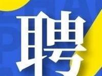 天津市大数据管理中心公开招聘