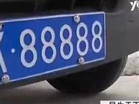 男子花160萬買車牌號88888,一天被查8回!