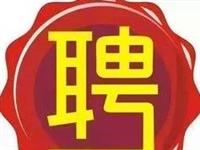【招聘】七台河市第六小学代课教师招聘公告