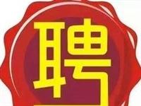 七臺河市1月26日人才招聘信息!