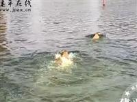 网友拍下:建平牤牛河里游泳,提醒大家请勿野??!