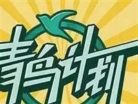 """【青鸟计划】商河籍学子快来""""向家乡报道""""!寒假实习""""职""""等你来!"""