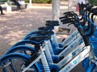 利好 齐河街头惊现大批小蓝车...据说免押金、七天免费骑!