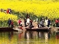"""到成都最近""""千岛湖""""赏油菜花,上万游客挤爆邛崃牟礼两河口"""