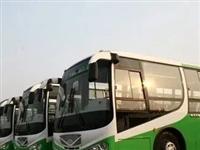 啥情况?富顺11路公交司机被点名,原因竟是...