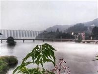 昨天早上,在金寨梅山史河边拍到的一幕!被惊呆了!