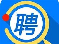桐城这家大企业公开招人,错过再等一年!
