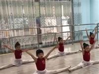 每一份辛苦付出都不被辜负!小天鹅教育2021年中国舞舞蹈考级圆满结束!