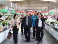 新区政协主席韩远达来海滨街督导创文