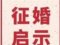 武安30歲女士(shi),誠意征(zheng)婚,條件如(ru)下......