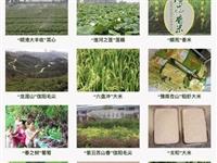 光山6个品牌上榜河南省农业知名品牌!有你熟悉的特产吗?