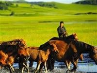 【围观】这些理由足以让你爱上内蒙古!