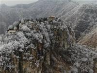青州出现罕见奇观被央视报道!在全国火了!